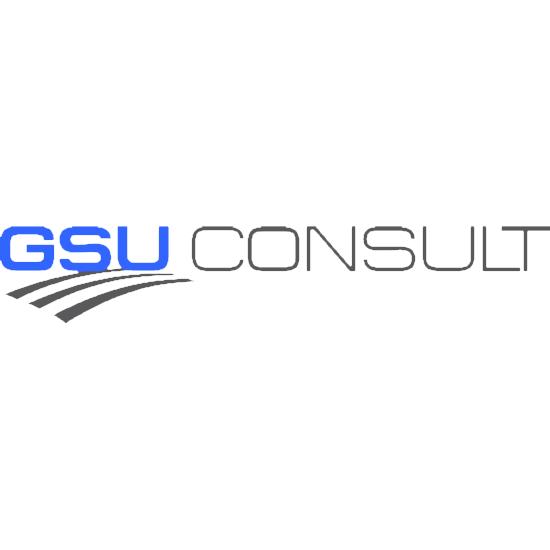 GSU Consult Logo