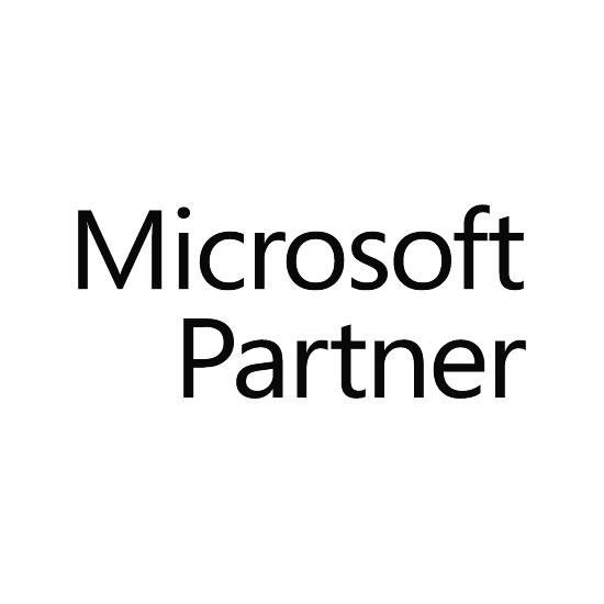 Microsoft Partner 550x550